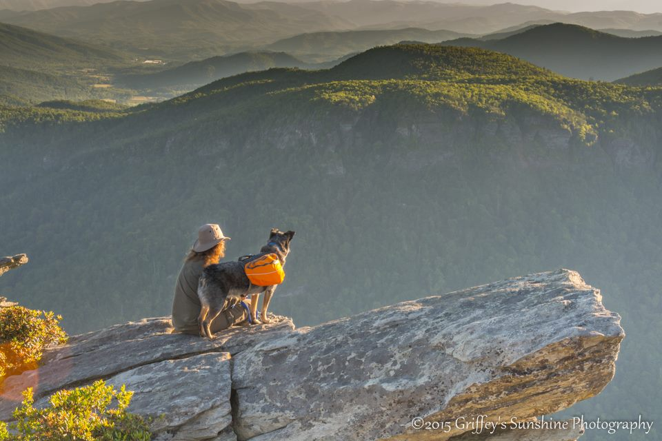 woman and dog on mountain top