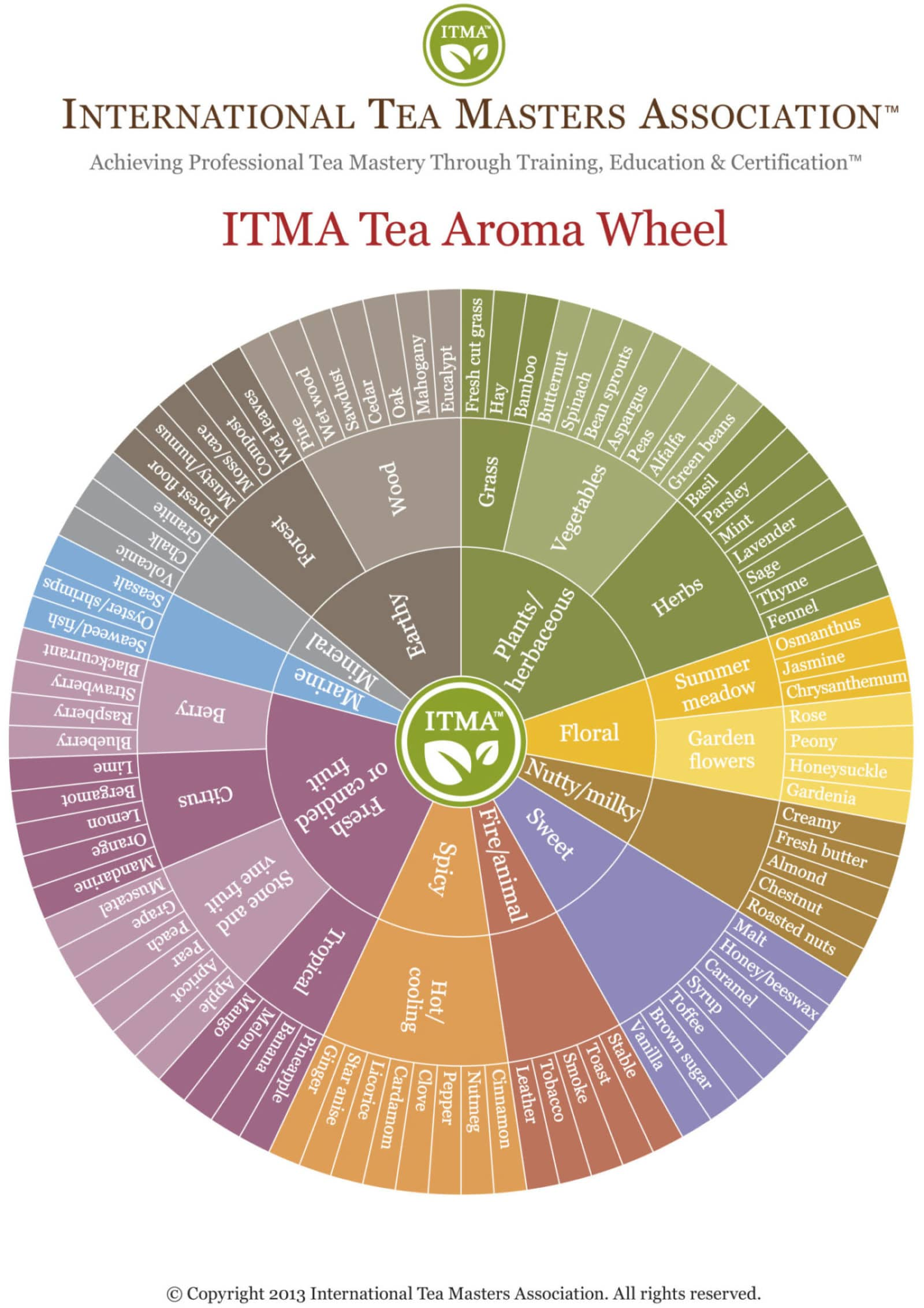 international tea masters flavor wheel